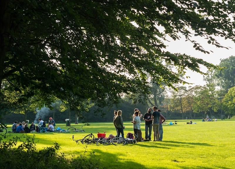 Hoe maken we de Rotterdamse parken circulair?